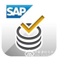 SAP远程接入解决方案