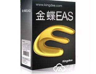 金蝶EAS远程接入解决方案