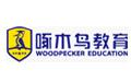 啄木鸟国际教育咨询(北京)有限公司